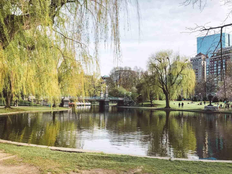 Complete Guide to Boston - Public Garden