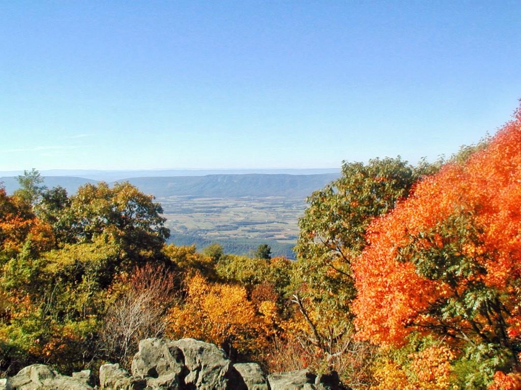 Vantage Point Shenandoah Valley