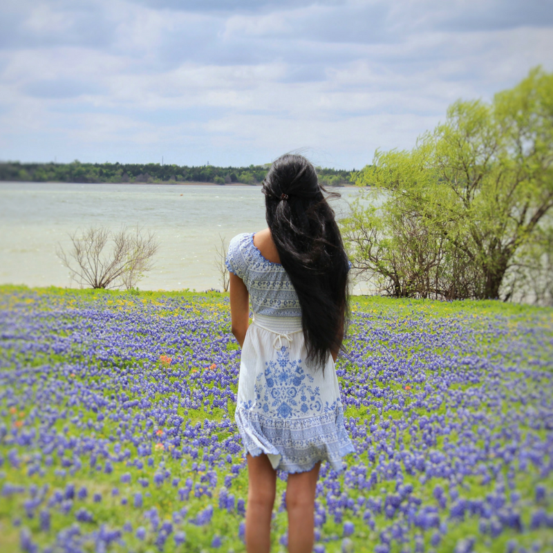 Best Places To See Bluebonnets In Ennis Texas Passport To Eden