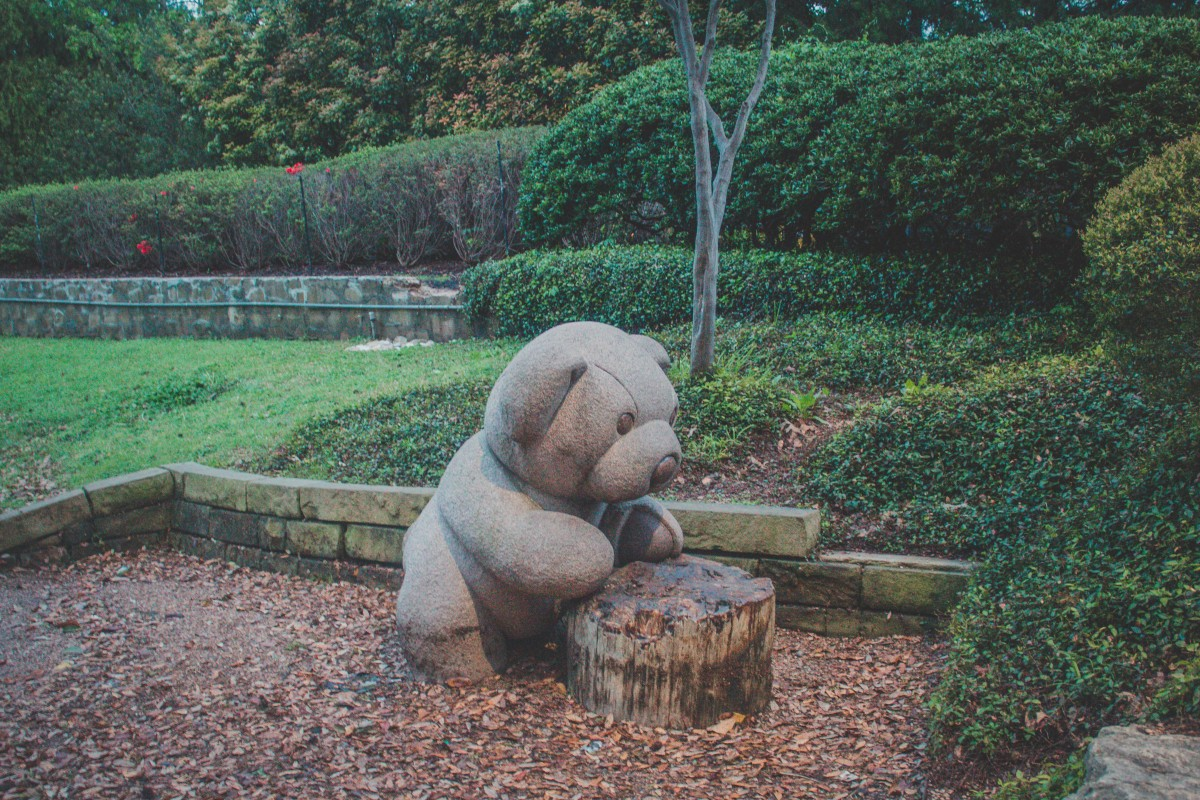 A small baby bear looking at a tree stump in Teddy Bear Park in Dallas.