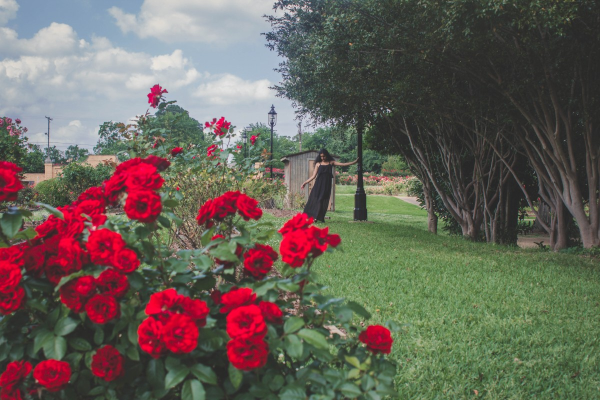 Visiting Tyler Rose Garden whilst on an east Texas road trip