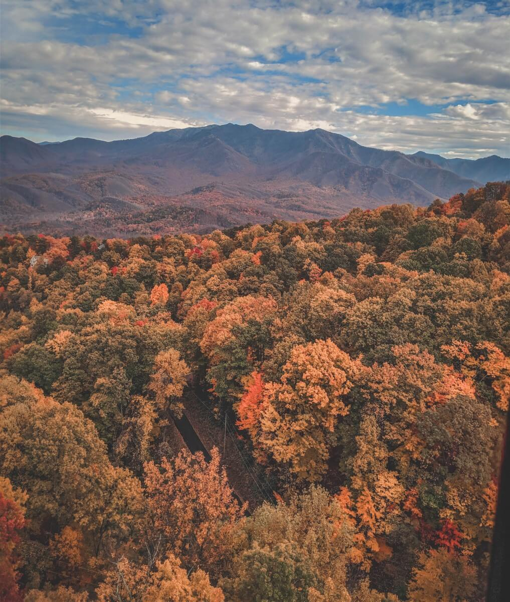 Fall colors that show why Tennessee is one of the prettiest states to visit