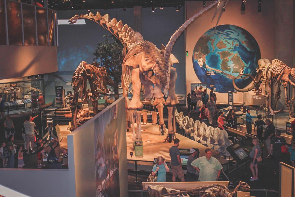 Perot Museum Interior