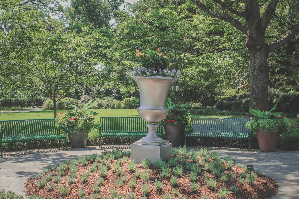 Dallas Arboretum flowers in spring