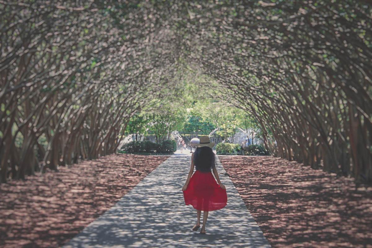 One Day in Dallas Arboretum running through Crape Myrtle Allee
