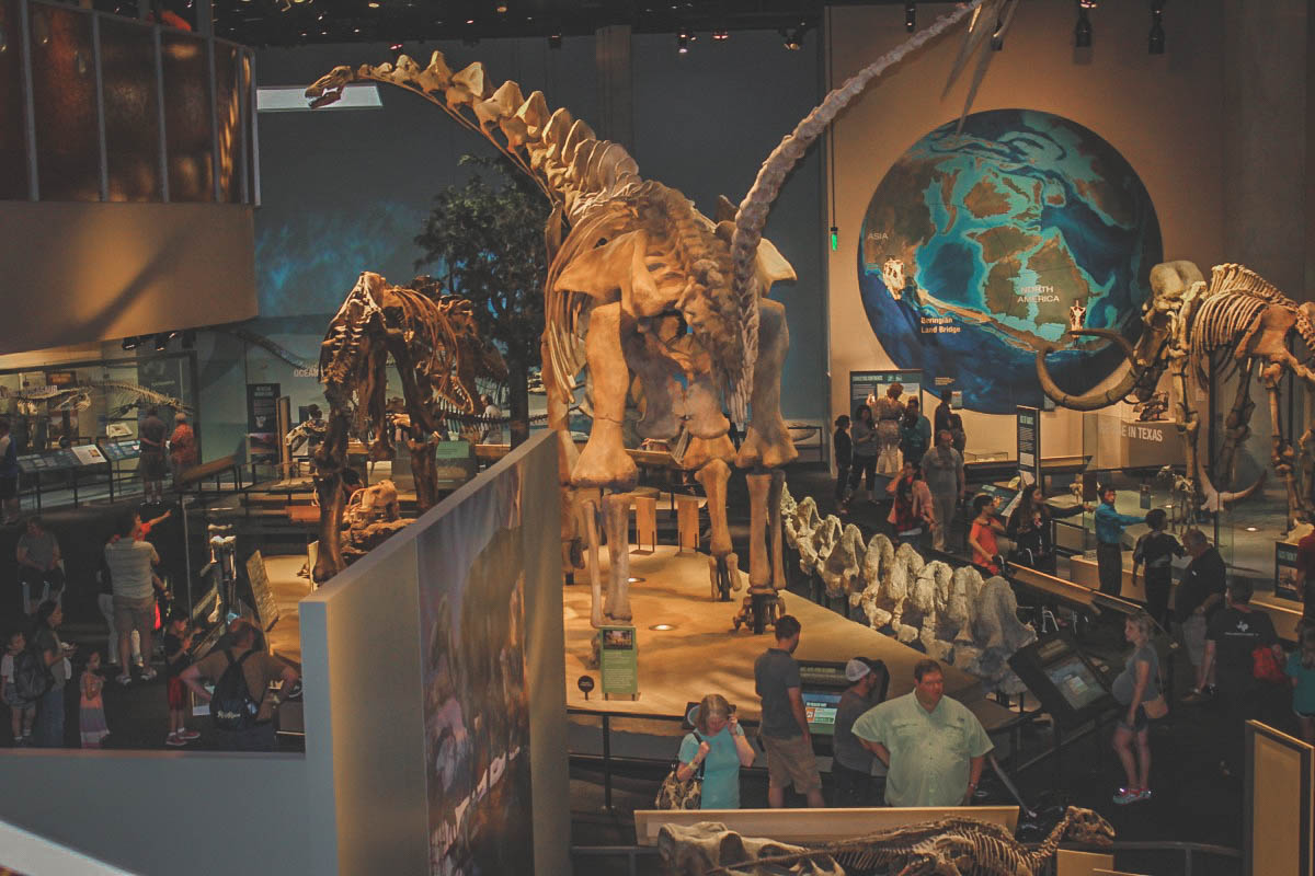 visiting the inside of the Perot Museum during my one day in Dallas