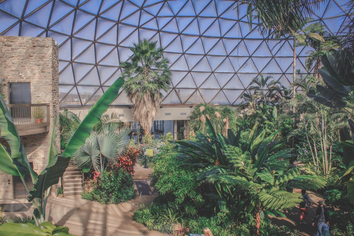 inside botanical garden Des Moines