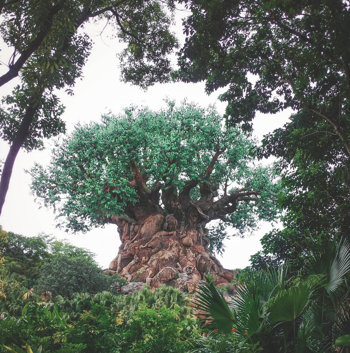 Tree Of Life sculpture in Animal Kingdom