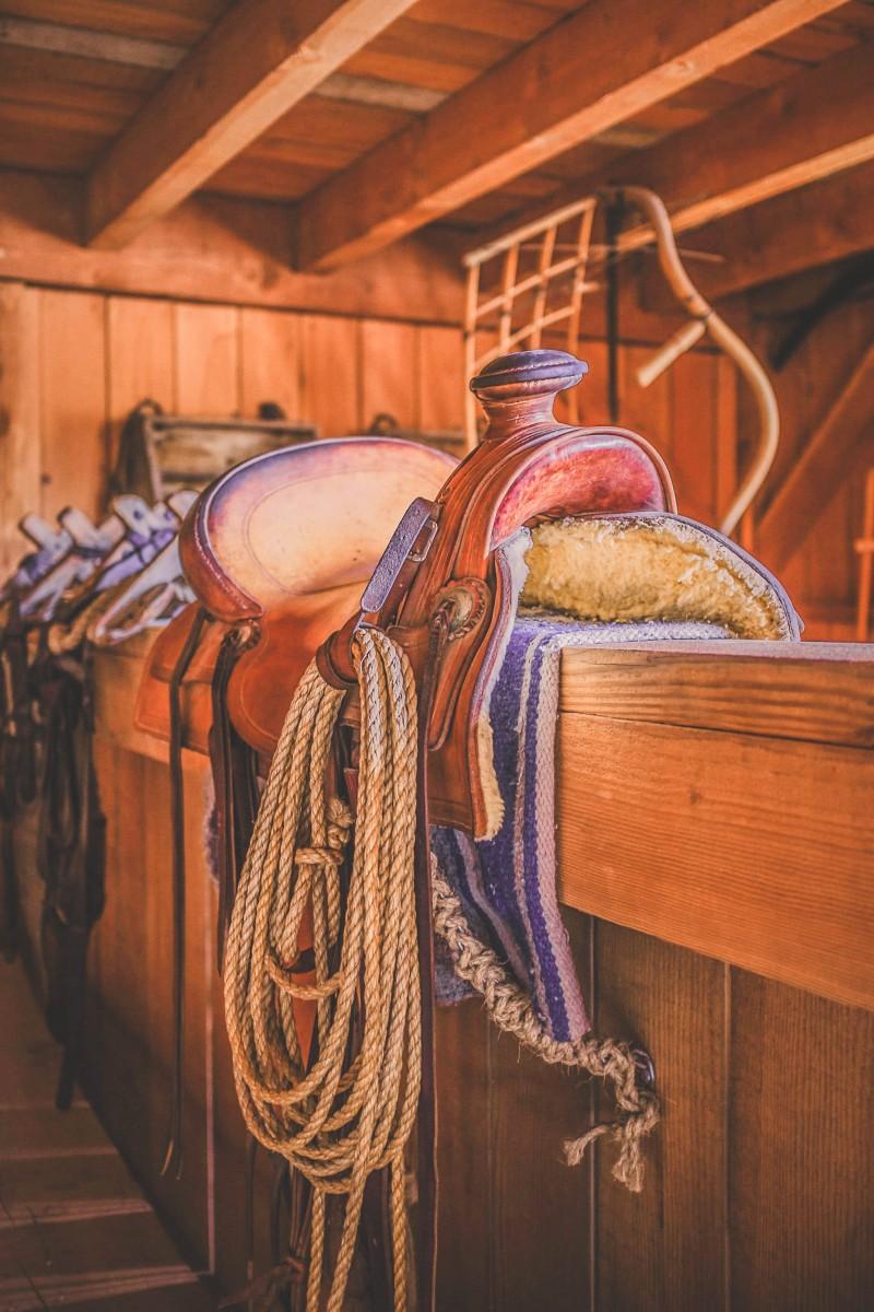 stock photo of a saddle shop