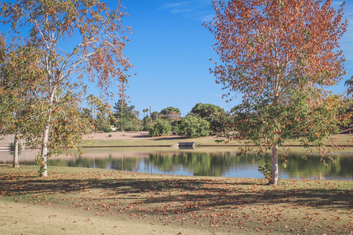 Photo of lake at Camelback Park, one of the best parks in Scottsdale, in December when the fall colors started to show