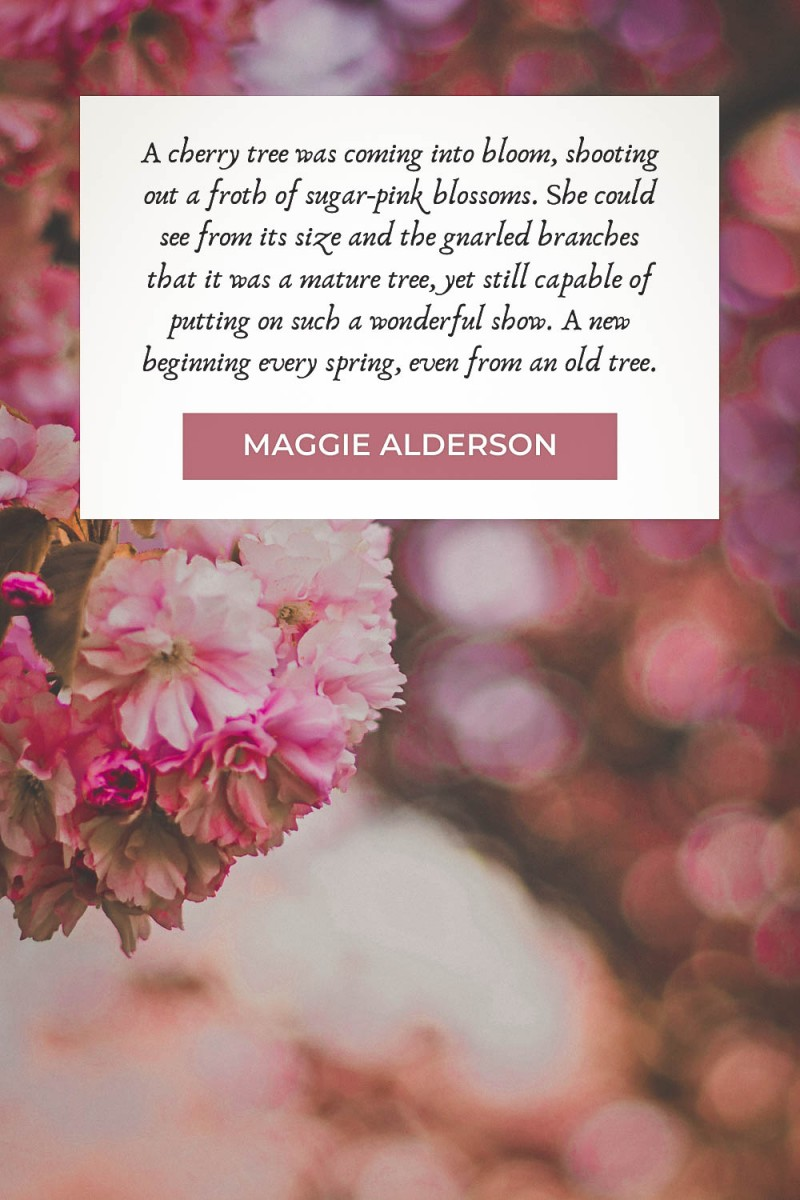 Cherry blossom quotes by Maggie Alderson