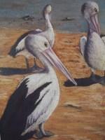 Celestine Dyson - Pelican Pals