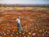 Rayma Reany - Amongst the Wildflowers