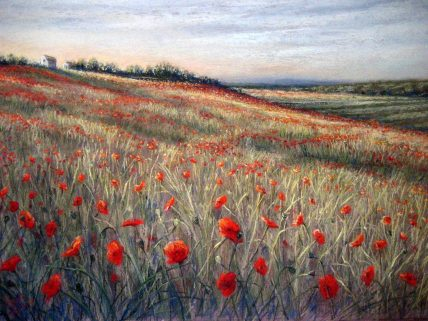 Rayma Reany - Wild Poppies, France