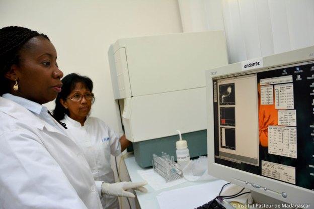 Unite d'Immunologie des Maladies Infectieuses