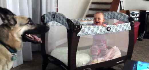 pastor-verifica-bebe