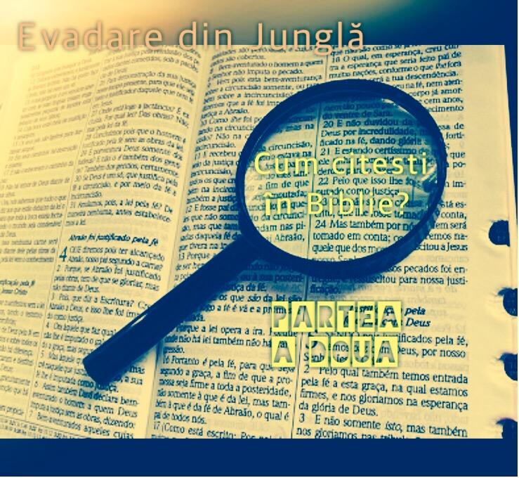 Read more about the article Cum citești în Scriptură?