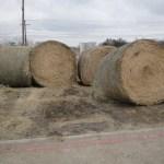 farm ranch supplies-https://www.pasturaslosalazanestx.com