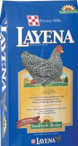 LAYENA (2)