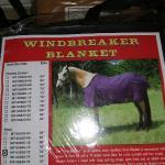 Horse blanket windbreaker