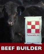 BeefBuilder