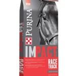 impact race track