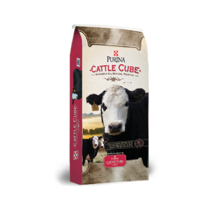20% Cattle Cube