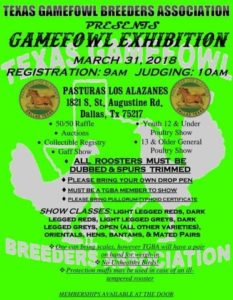 Gamefowl Exhibition