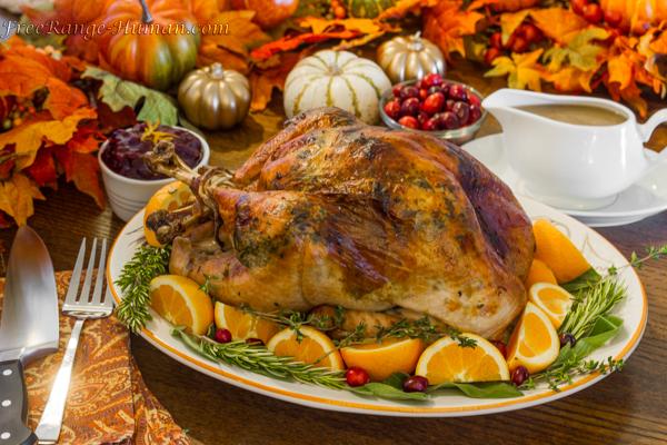 Top Ten Thanksgiving Recipes