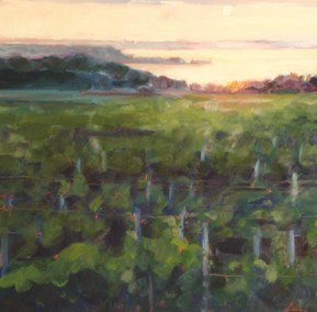 Vineyard-Sunset-II