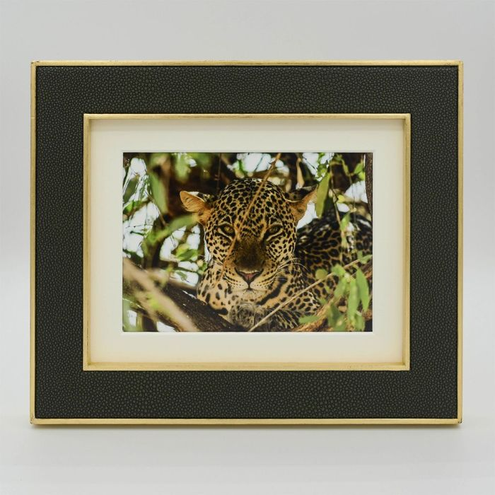 10 x 8 Otis Moss Green Photo Frame with Gold Frame, a Mount and Leopard Photo