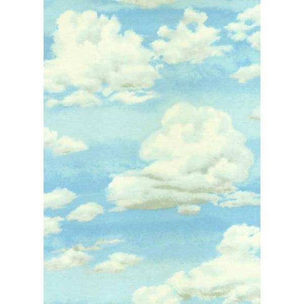 Landscape Sky - 803/B2