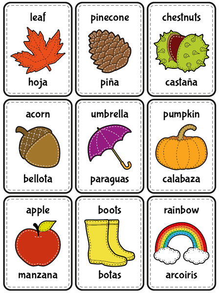 Number Words 100 Spanish
