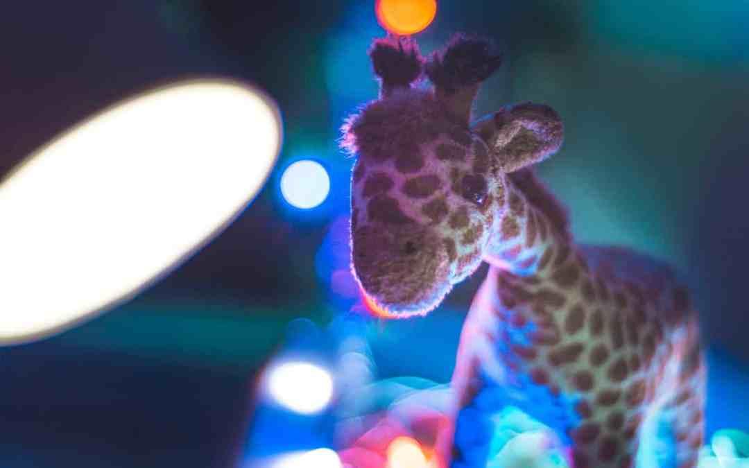 Giraffensprache GFK für Kinder Giraffe