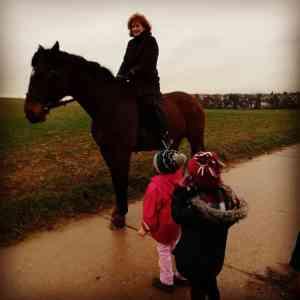 Besuch Pferd