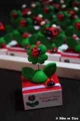 Boîtes à dragées trèfles 4 feuilles porte-bonheur et coccinelles