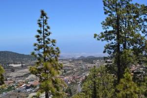 Senderismo en Tenerife - Camino del Pino Enano en Vilaflor