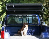 Buy the patent: Big Pawz Pickup Truck Bed Pet Shelter or ...