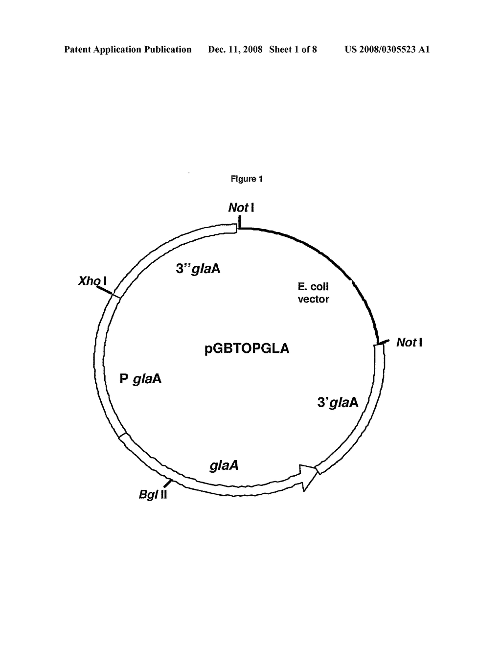 fungus cell diagram labeled obd2 to obd1 distributor wiring fungal
