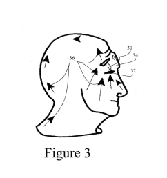 nose to back neck and eye muscles exercise diagram schematic and image 04 [ 1024 x 1320 Pixel ]
