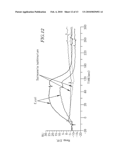 small resolution of nucleic acid chip for obtaining binding profile of single strand nucleic acid and unknown biomolecule manufacturing method thereof and analysis method of
