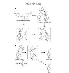 genes encoding chavicol eugenol synthase from the creosote bush larrea tridentata diagram schematic and image 05 [ 1024 x 1320 Pixel ]