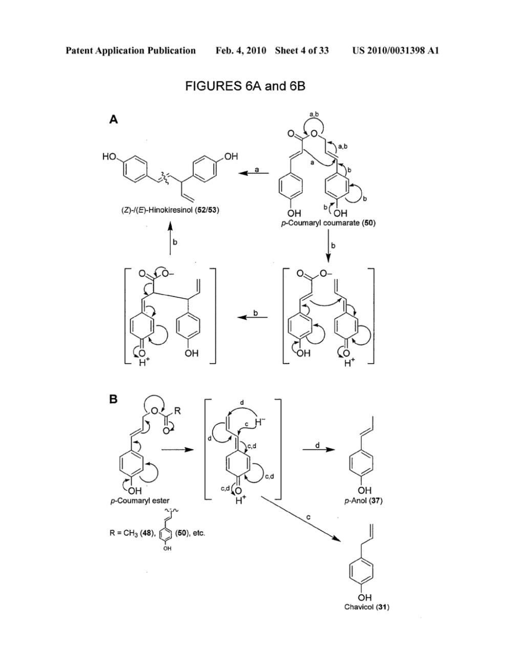 medium resolution of genes encoding chavicol eugenol synthase from the creosote bush larrea tridentata diagram schematic and image 05