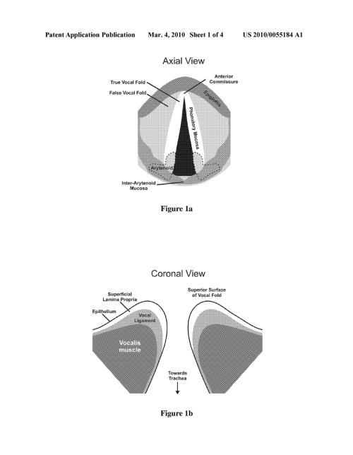 small resolution of hydrogels for vocal cord and soft tissue augmentation and repair diagram schematic and image 02