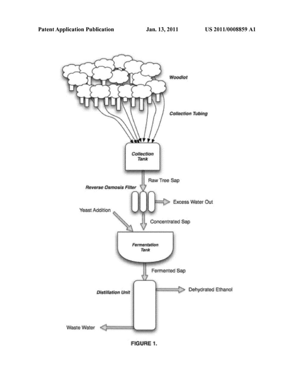 medium resolution of production of ethanol from tree sap diagram schematic and image 02