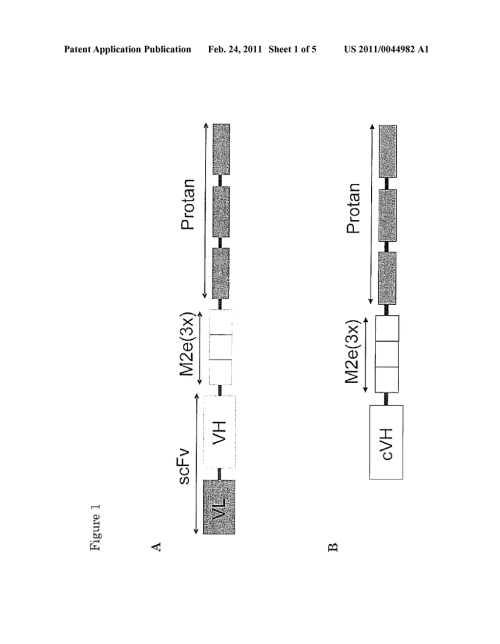 small resolution of  an antibody against hemagglutinin a conserved influenza antigen and an immunostimulating carrier binding domain diagram schematic and image 02