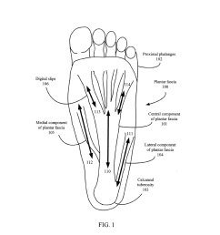 foot pain relief device diagram schematic and image 02diagram of feet pain 21 [ 1024 x 1320 Pixel ]