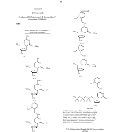 nucleotides and nucleosides base modified with labels and photocleavable terminating groups and methods for their use in dna sequencing diagram  [ 1024 x 1320 Pixel ]