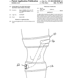 knee brace to limit rotation between the femur and tibia diagram schematic and image 01 [ 1024 x 1320 Pixel ]
