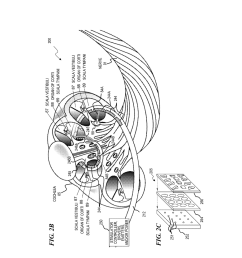 optical stimulation cochlear implant with electrode s at the apical end for electrical stimulation of apical spiral ganglion cells of the cochlea diagram  [ 1024 x 1320 Pixel ]